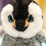 Leonidas D. Penguin
